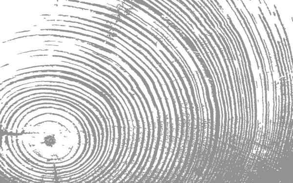 Design Akustikbild Wood nach Maß